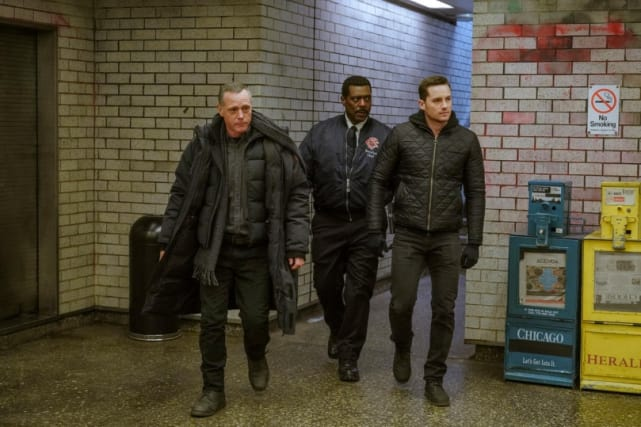 Hiding not seeking and profiles chicago fire and chicago pd