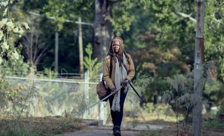 Revelation - The Walking Dead Season 9 Episode 14