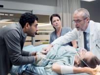 Dr. Bisjop And Co - Transplant