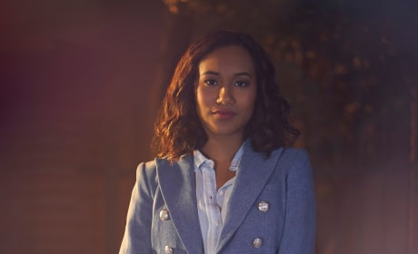 Sydney Park - The Perfectionists