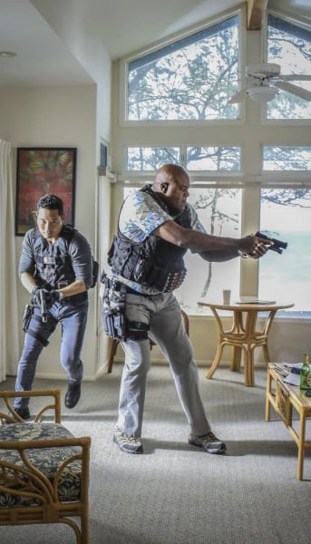 Sobering Situation - Hawaii Five-0 Season 7 Episode 19