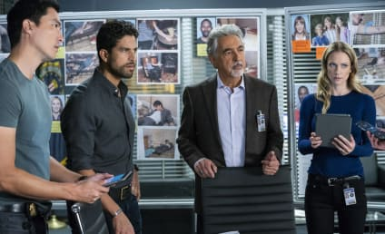 Criminal Minds Season 14 Episode 9 Review: Broken Wing