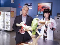 NCIS Season 14 Episode 3