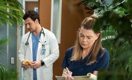 Avoidance - Tall - Grey's Anatomy Season 15 Episode 18