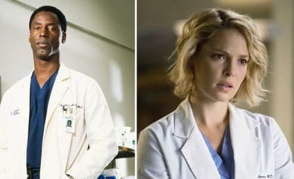Isaiah Washington Slams Former Grey's Anatomy Co-star Katherine Heigl