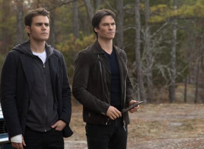 Watch The Vampire Diaries Season 8 Episode 14 Online