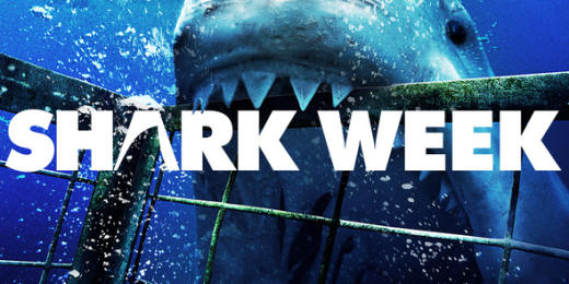 Shark Week Pic