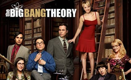 Which Character from The Big Bang Theory Are You?