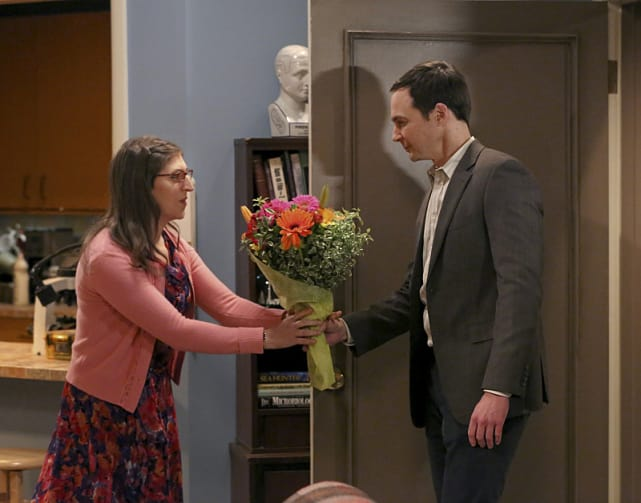 Flowers for the Lady - The Big Bang Theory Season 9 Episode 11