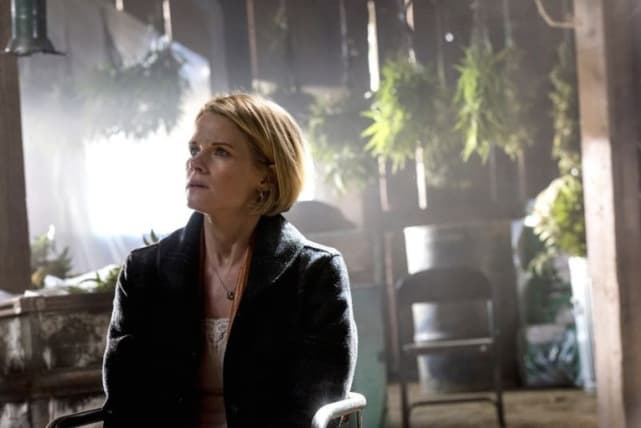 """Joelle Carter as Ava Crowder - Justified Season 6 Episode 13, """"The Promise"""""""