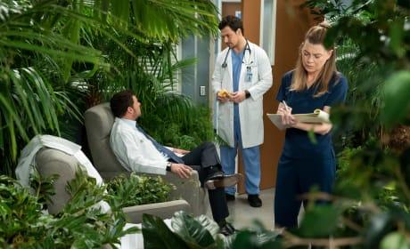 Avoidance  - Grey's Anatomy Season 15 Episode 18