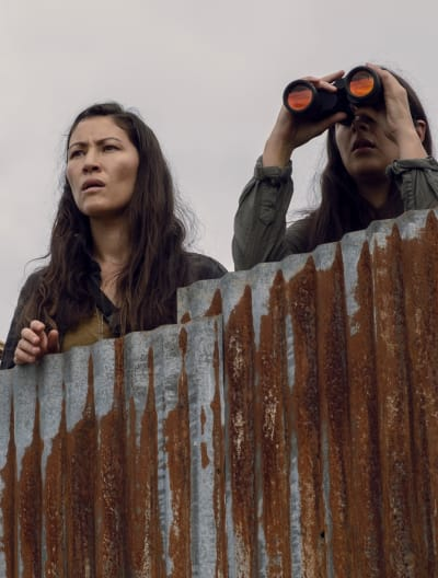 Keeping Watch - The Walking Dead Season 9 Episode 10