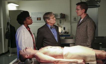 NCIS Season 16 Episode 16 Review: Bears and Cubs