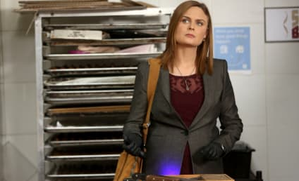 Bones Picture Preview: Second Chances