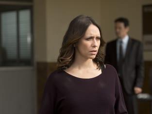 Criminal Minds Season 10 Episode 17: \