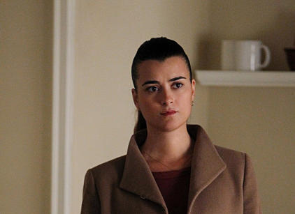 Watch NCIS Season 10 Episode 20 Online