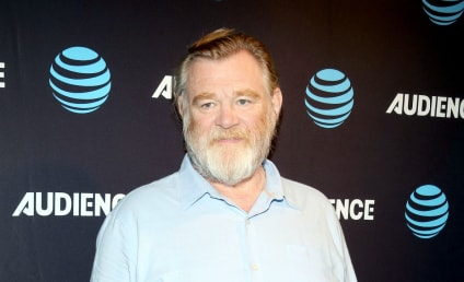 Brendan Gleeson Cast as President Donald Trump in James Comey Limited Series