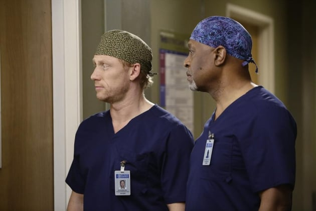Pair of Doctors - Grey's Anatomy Season 11 Episode 14