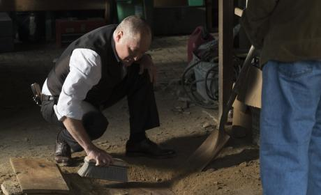 Red goes digging - The Blacklist Season 4 Episode 21