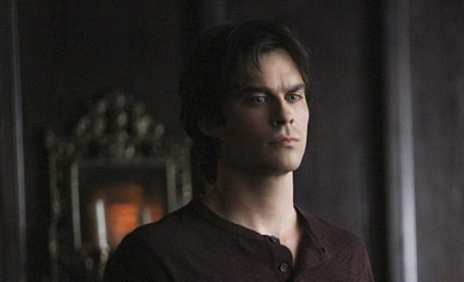 "Damon to Drink, Get ""Wild"" on The Vampire Diaries Season 7"