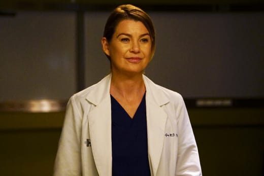 Happy Mer - Grey's Anatomy Season 13 Episode 23