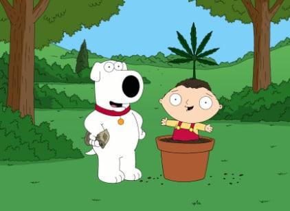 Watch Family Guy Season 7 Episode 12 Online