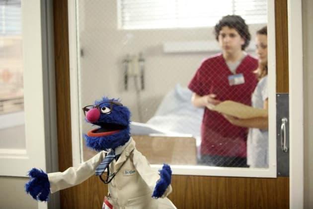 Grover on Scrubs
