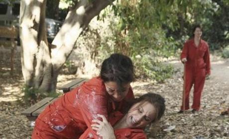 Emily vs. Spencer
