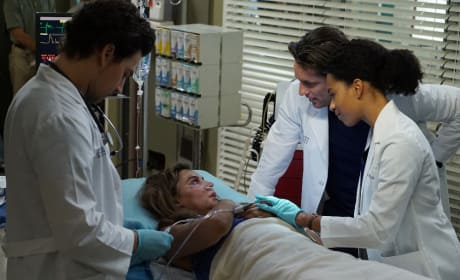 A little comfort - Grey's Anatomy Season 13 Episode 14