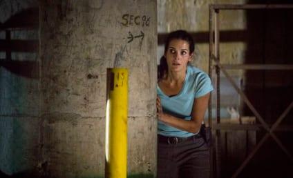 Rizzoli & Isles: Watch Season 5 Episode 8 Online