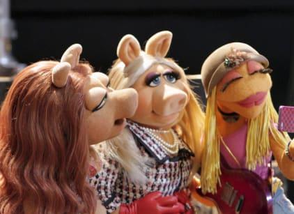 Watch The Muppets Season 1 Episode 1 Online