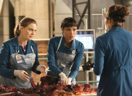 Watch Bones Season 11 Episode 10 Online