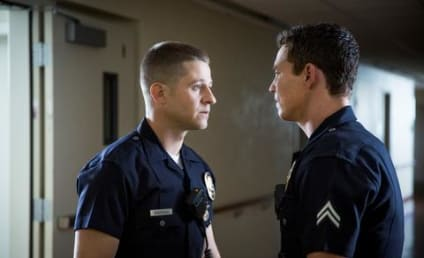 Southland Review: Better Than You