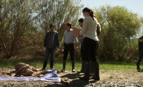 Criminal Minds Sneak Peek: A Gruesome Discovery