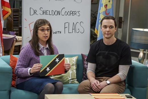 More Fun With Flags - The Big Bang Theory