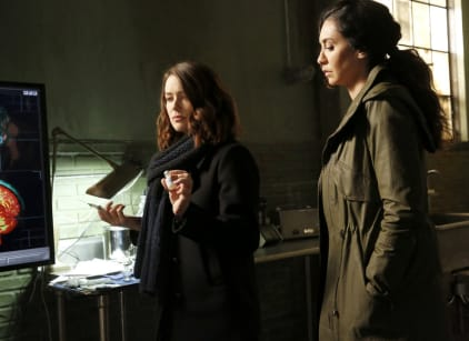 Watch The Blacklist Season 4 Episode 19 Online