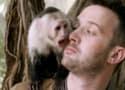 Scorpion Season 3 Episode 19 Review: Monkey See, Monkey Poo