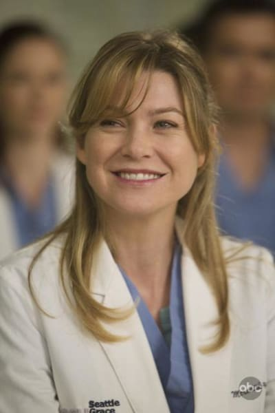 Meredith Grey's Anatomy