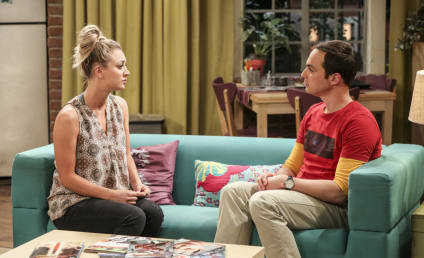 Watch The Big Bang Theory Online: Season 10 Episode 24