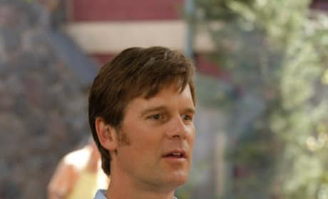 Peter Krause as Adam