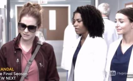 Watch Grey's Anatomy Online: Season 14 Episode 12