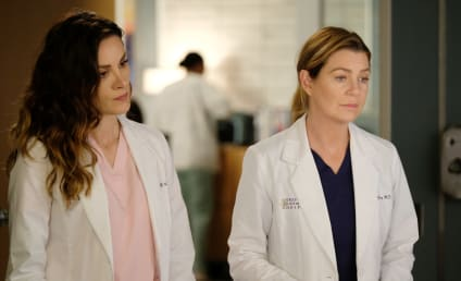 Grey's Anatomy: ABC Boss Addresses Final Season Speculation