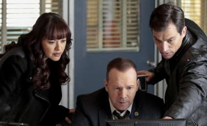 Watch Blue Bloods Online: Season 6 Episode 19