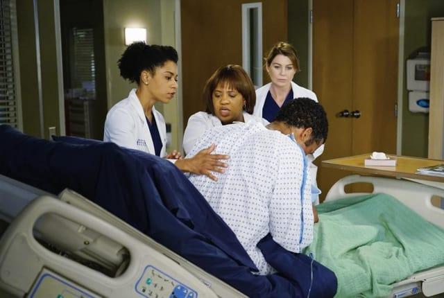 Watch Greys Anatomy Season 11 Episode 12 Online Tv Fanatic