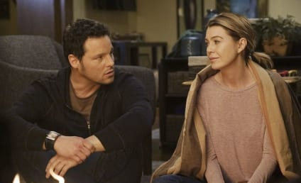 Grey's Anatomy Season 12 Episode 16 Review: When It Hurts So Bad