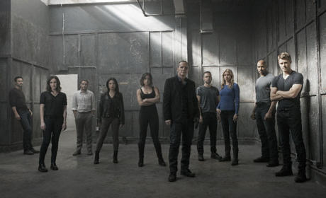 Agents of S.H.I.E.L.D. Season 3 Cast