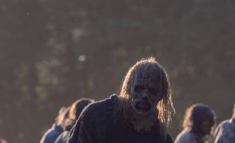 Walking Among The Dead - The Walking Dead Season 9 Episode 12