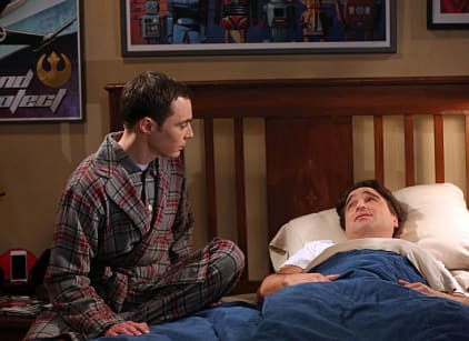 Watch The Big Bang Theory Season 8 Episode 9 Online