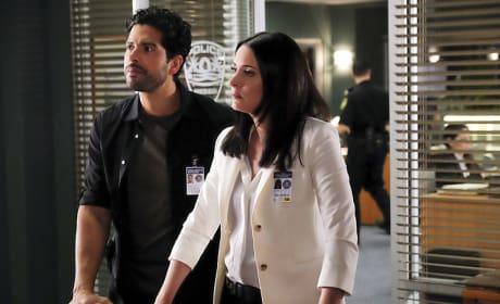 Welcome Back Emily - Criminal Minds