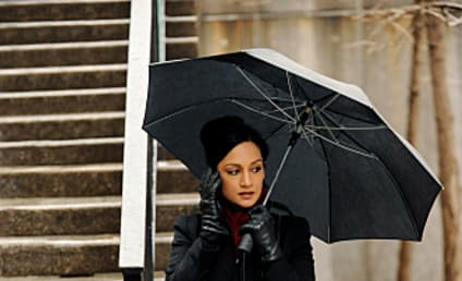 Archie Panjabi Previews New Insight into Kalinda on The Good Wife